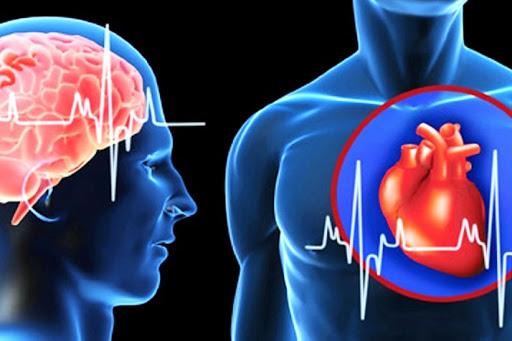 Что такое инсульт, а что инфаркт — как отличить